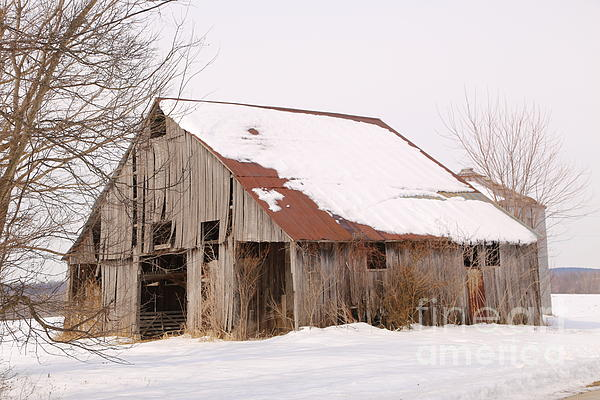 Dwight Cook - Barn in Kentucky no 16