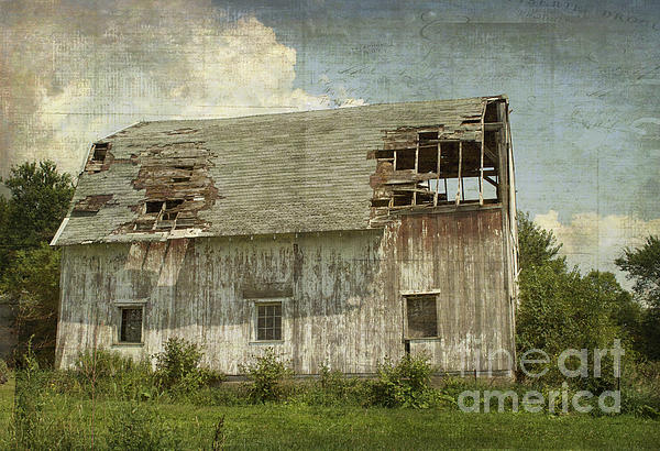 Luther Fine Art - Barn - Lonely and Abandoned - Luther Fine Art