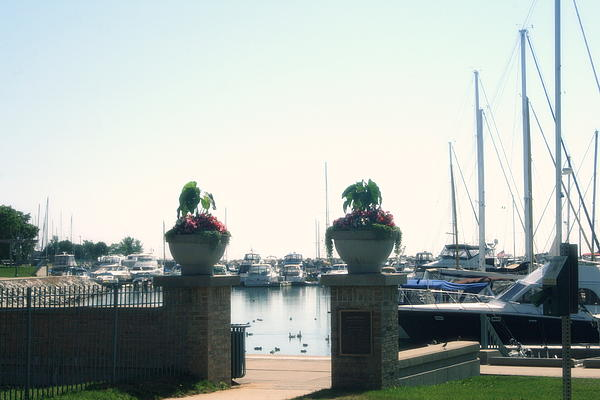 Kay Novy - Beautiful Marina Entrance