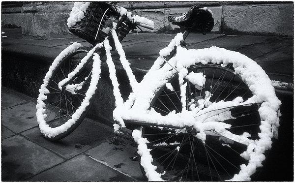 Joan Carroll - Bicycle In Snow