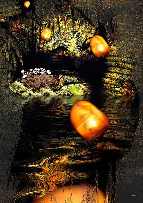 Carl Rolfe - Birdcave