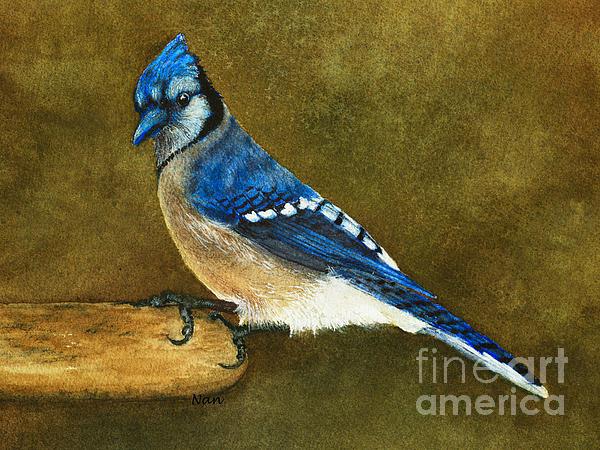Nan Wright - Blue Jay
