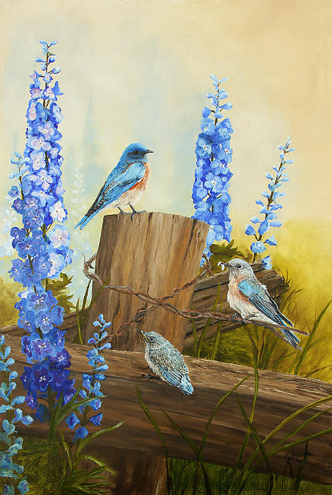 Johanna Lerwick - Bluebird Family and Delphiniums