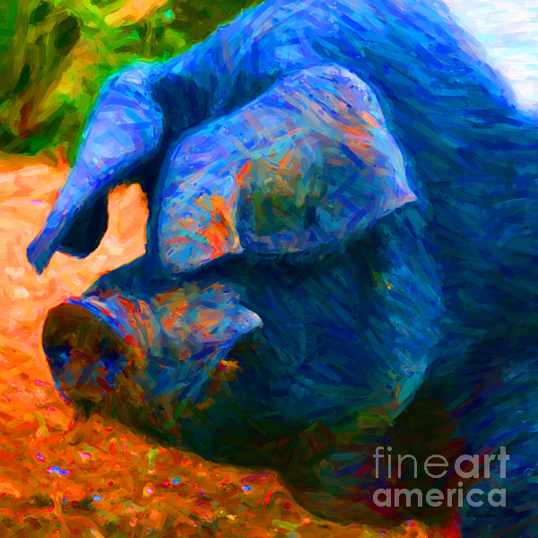 Wingsdomain Art and Photography - Boss Hog - 2013-0108 - square