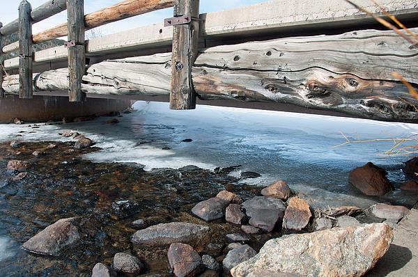 Minnie Lippiatt - Bridges