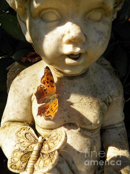 Judy Via-Wolff - Butterflies and Cherub