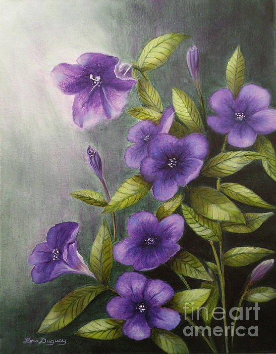 Lora Duguay - Carolina Wild Petunia Ruellia caroliniensis