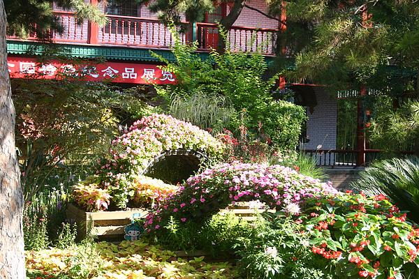 Barbie Corbett-Newmin - Chinese Garden