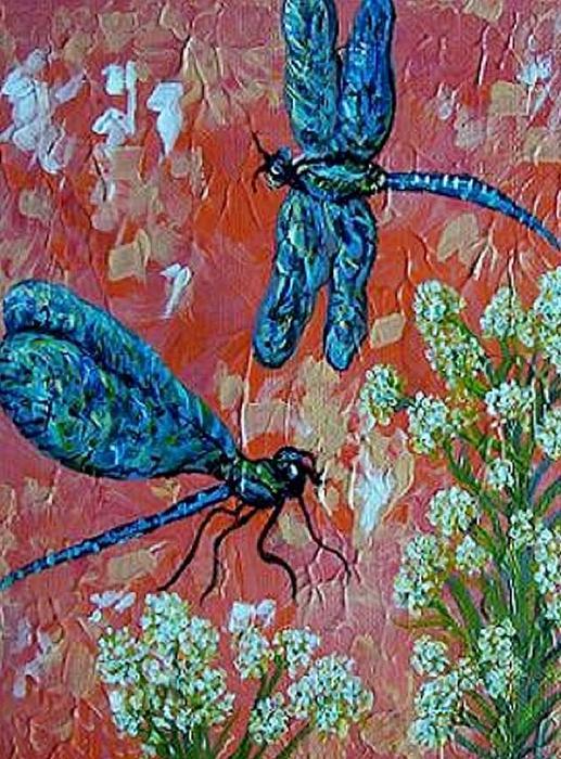 Eloise Schneider - Dragonfly Duo
