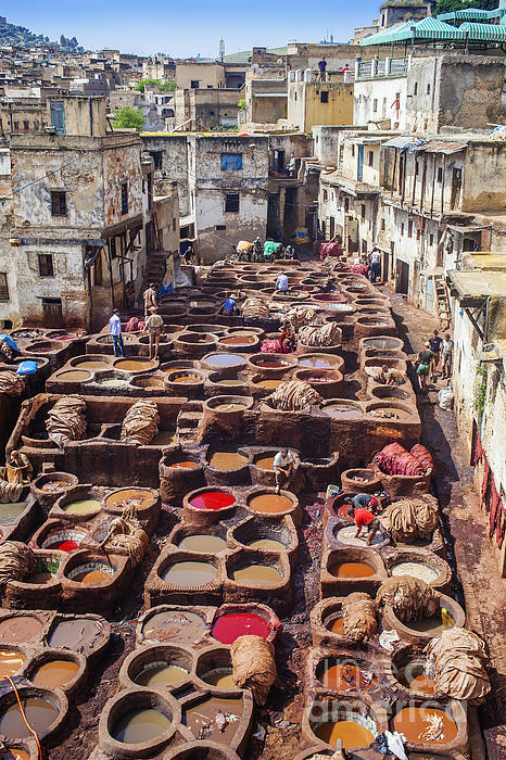 Patricia Hofmeester - Fez tannery