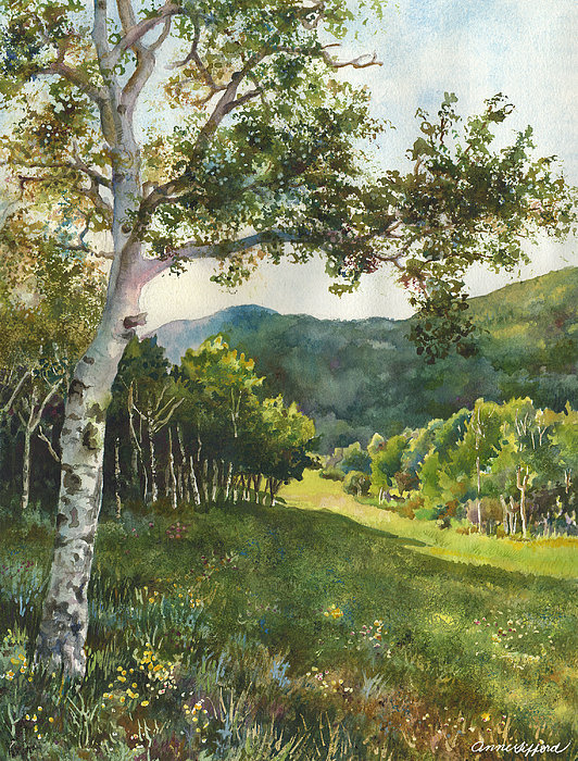 Anne Gifford - Field of Light at Caribou Ranch