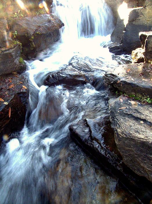 Lisa Wooten - Finlay Park Waterfall