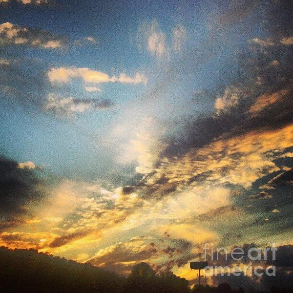 Genevieve Esson - Firecracker Sunset