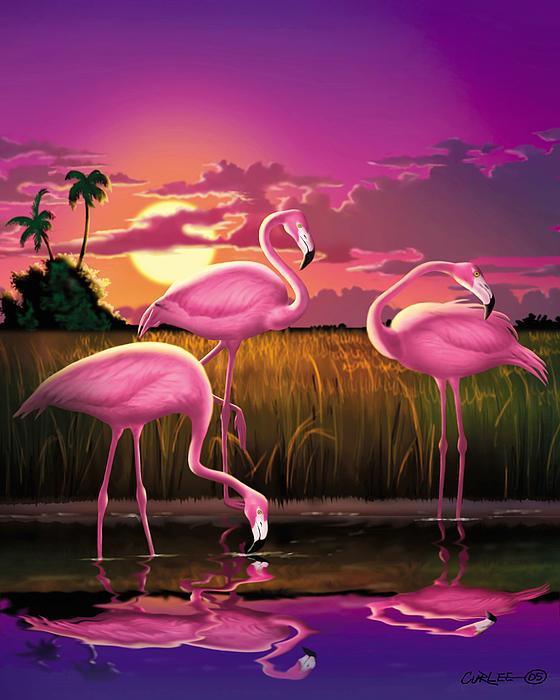 Walt Curlee - Flamingoes Flamingos Tropical Sunset landscape florida everglades large hot pink purple print