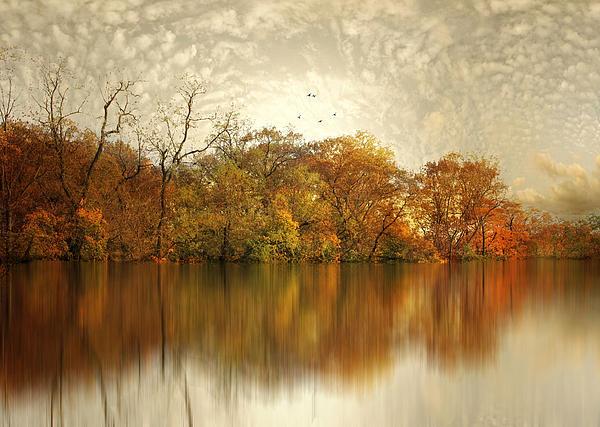 Jessica Jenney - Floating Foliage