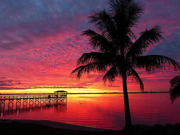 Elaine Franklin - Florida Sunset II
