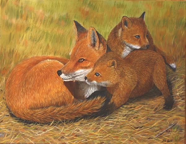 Sid Ball - Fox Family