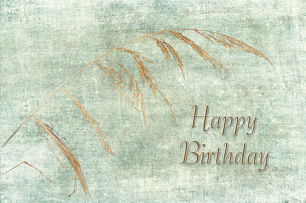 Happy Birthday Greeting Card Wild Grass Greeting Card for Sale – Nature Birthday Card