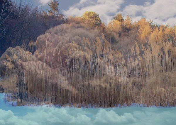 Rick Todaro - Heavenly  Landscape