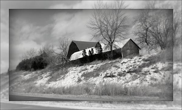 Kay Novy - Hillside Farm