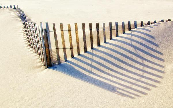 Carolyn Derstine - Lines in the Sand