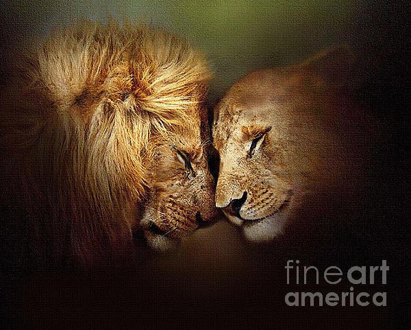 Robert Foster - Lion Love