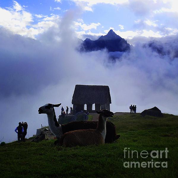 Xueling Zou - Machu Picchu Peru 14