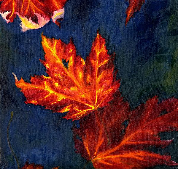 MM Anderson - Maple Leaves in Autumn