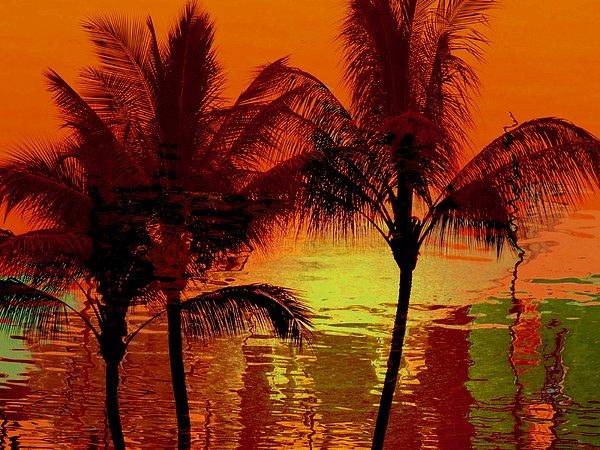 Athala Carole Bruckner - Metallic sunset
