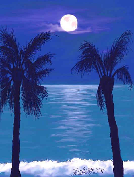 Amy Scholten - Midnight in the Tropics