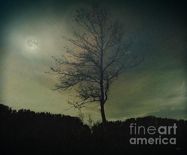 Peter Awax - Moonspell