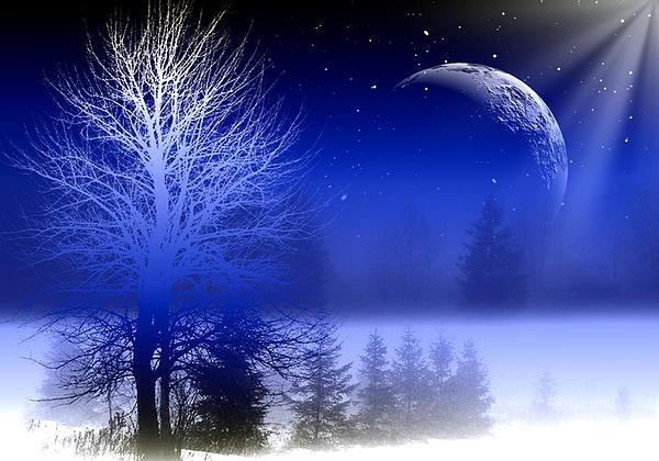 Mark Ashkenazi - Nature In Blue