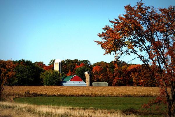 Kay Novy - Nestled Among The Autumn Woods