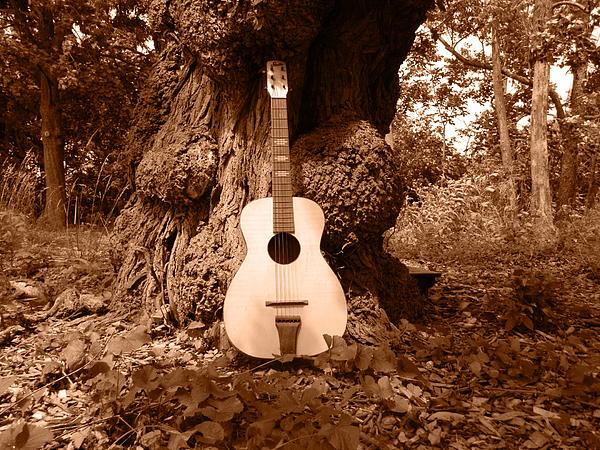Nancy Spirakus - Old Stella under the Tree
