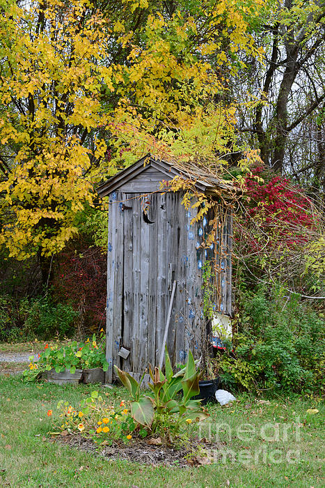 Paul Ward - Outhouse Surrounded by Autumn Leaves