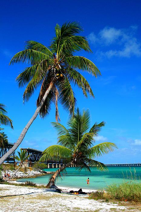 Miles Stites - Palm Sunday