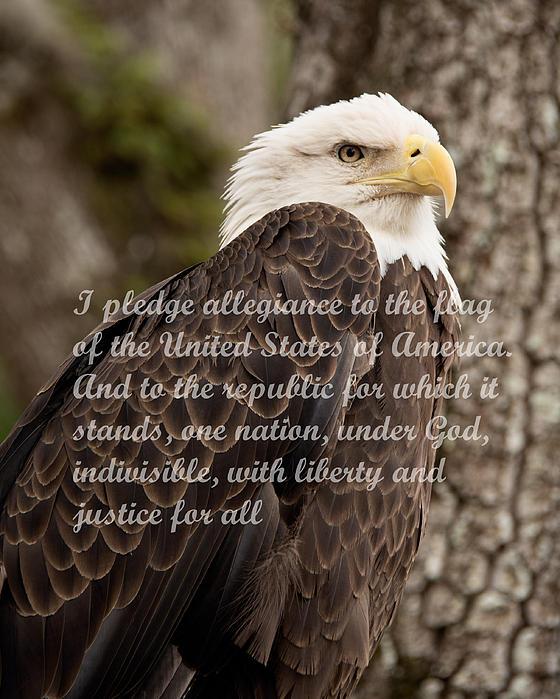 John Black - Pledge of Allegiance