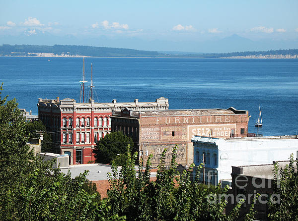 Connie Fox - Port Townsend From the Bell Tower