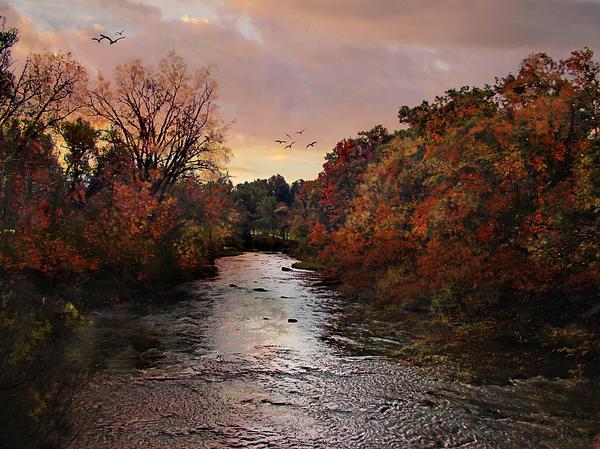 Lianne Schneider - Reflections of an Autumn Day