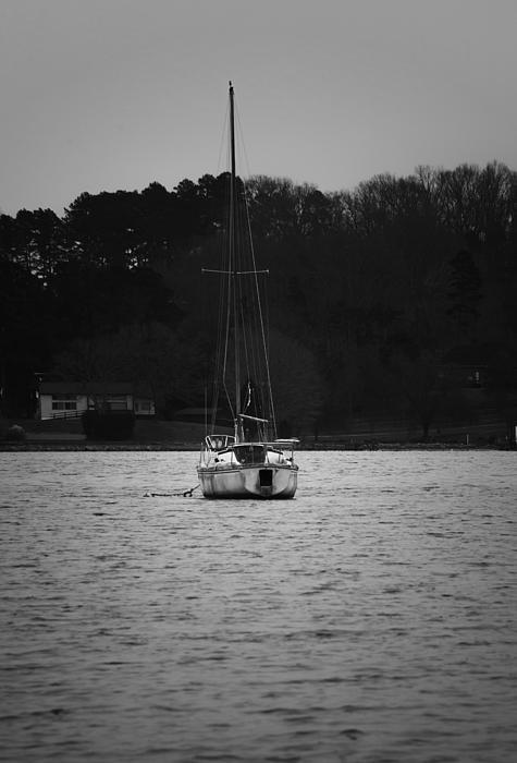 Sharon Popek - Sailboat on the Water
