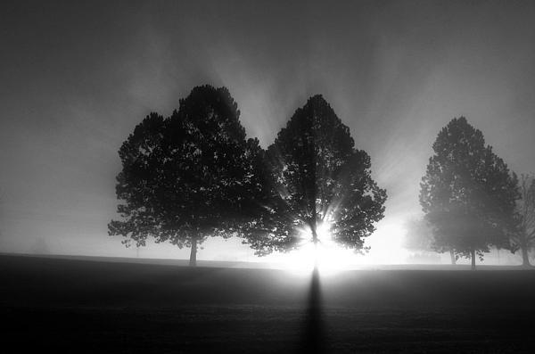 R John Ferguson - Samhain Series 1