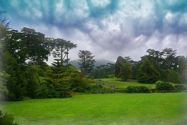 Reese Lewis - San Francisco Botanical Garden