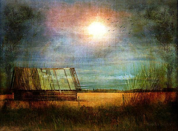 Sandra Foster - Shack On The Prairie Corner