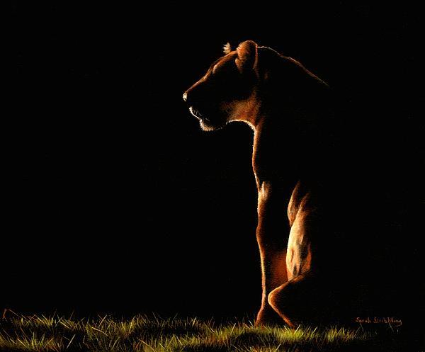 Sarah Stribbling - Sitting in the shadows