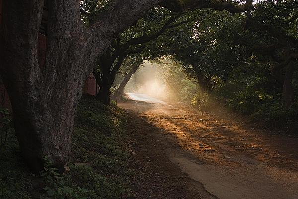 Sunil Kapadia - SKC 4672 The Path towards Hope
