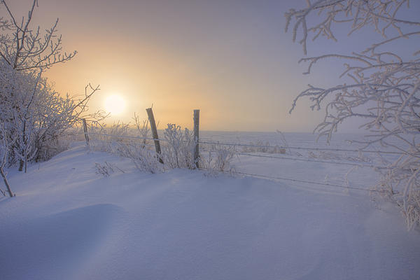 Dan Jurak - Snow Drifts and Barbed Wire
