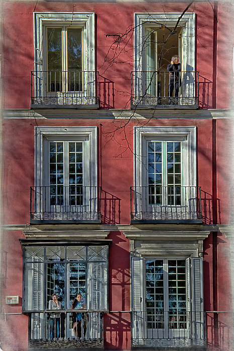 Joan Carroll - Spring Sunshine in Madrid
