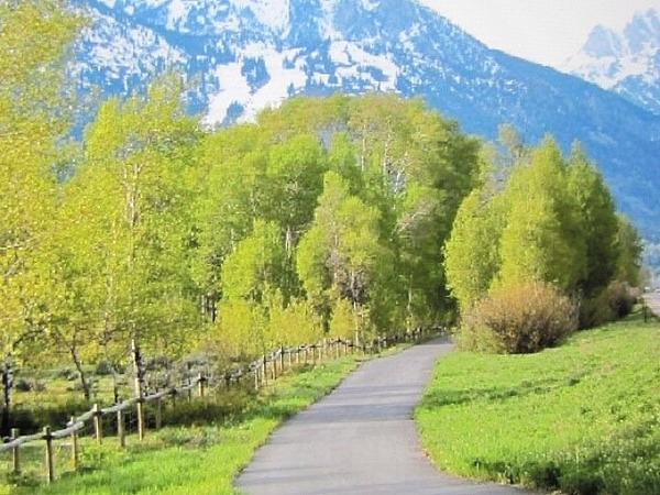 Shawn Hughes - Springtime in Jackson Hole by the Grand Tetons