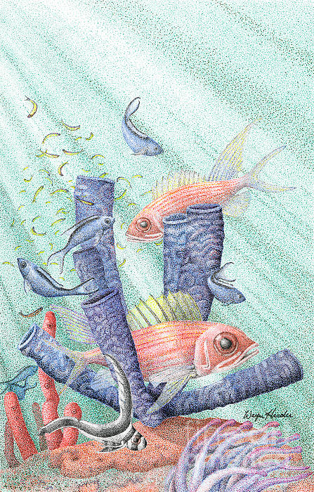 Wayne Hardee - Squirrel Fish Reef