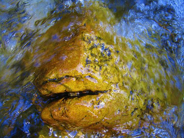Janice Westerberg - Stone Fish
